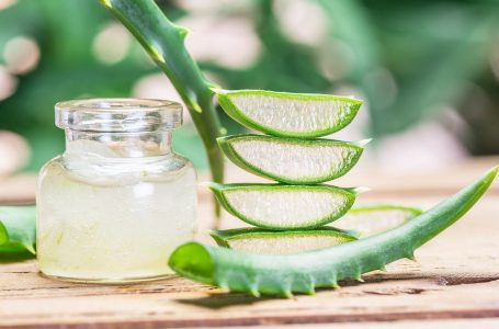 5 DIY Masks! Summer Skincare: Aloe Vera Benefits